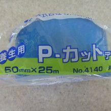 P1050508